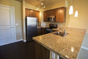 7494922274 fa86d613f1 b 300x200 Update: Terravita Luxury Apartments Open for Occupation