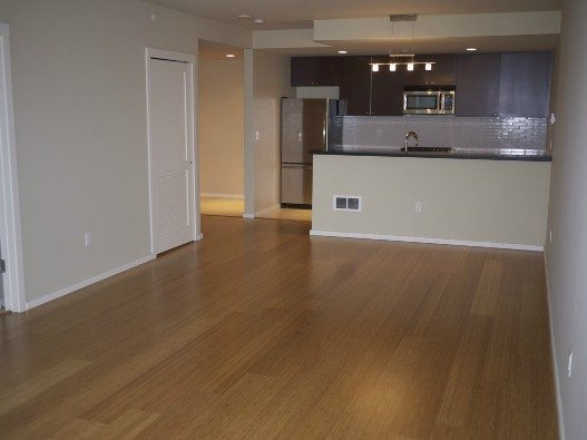 Bamboo floors at 76 Cedar St #804