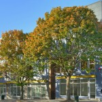 1826 E Yesler Way Exterior 150x150 Award Winning Central District Live/Work @ UrbanTrees