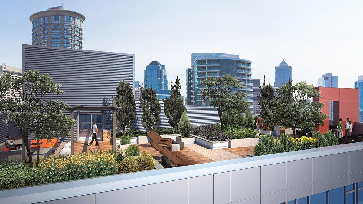 Martin roof deck
