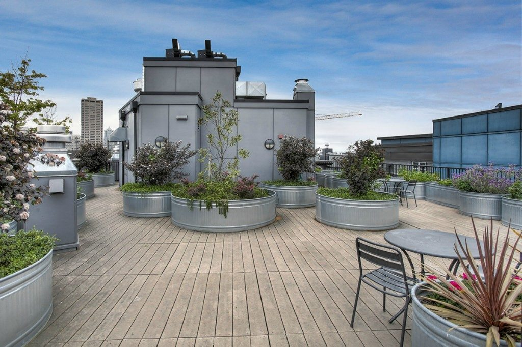 1408 12th Ave - rooftop deck