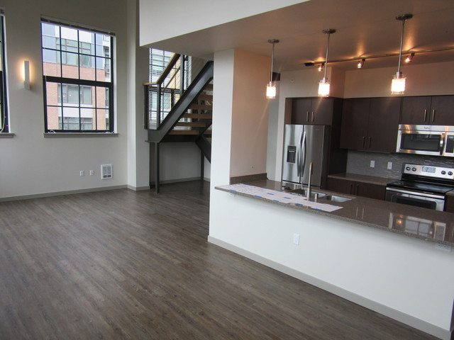 Broadstone Infinity - large - kitchen to side windows