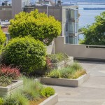 Belltown Water View Condo At An Affordable Price