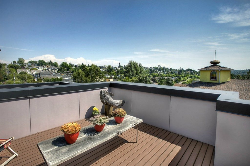 939 Marin Luther King Jr Way S - roof deck view