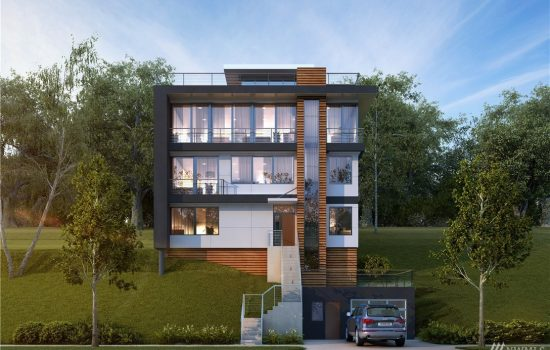 Madrona New Construction Modern